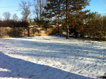 Snow covered yard in Louisville