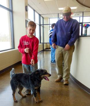 Boy Adopts Blaine the Blue Heeler from Hardin County Animal Shelter
