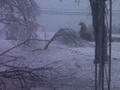 ice,trees,branches,snow,storm,debris