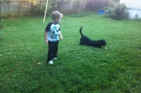 Josiah playing ball with Chip.